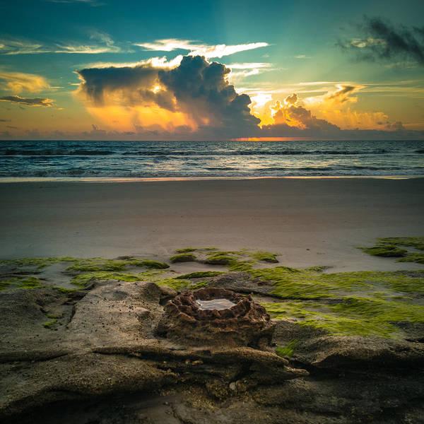 Flagler Photograph - Ocean Sunrise At Washington Oaks Gardens State Park by Danny Mongosa