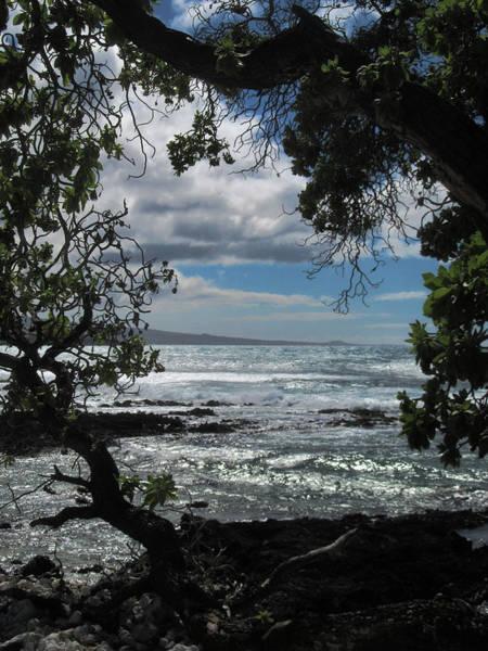 Photograph - Ocean View by Pamela Walton