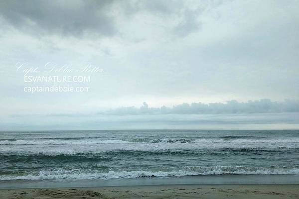 Photograph - Ocean Waves 1 by Captain Debbie Ritter