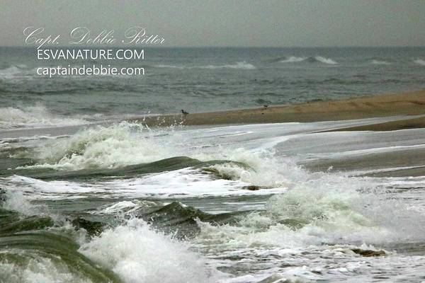 Photograph - Ocean Waves 3 by Captain Debbie Ritter