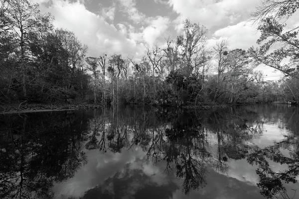 Photograph - Ocklawaha Oxbow #2 by Paul Rebmann
