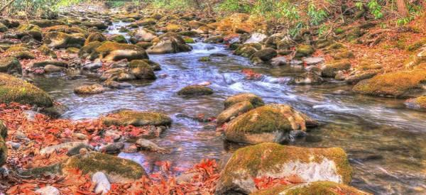 Photograph - Oconaluftee  Flow by Carol Montoya