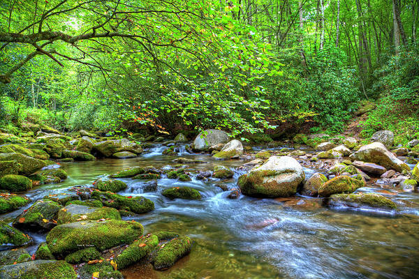 Photograph - Oconaluftee River by Dale R Carlson