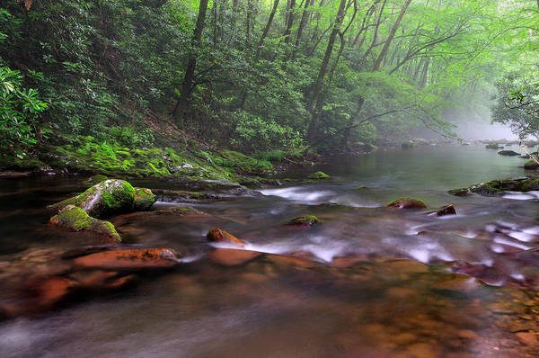 Photograph - Oconaluftee River Mist - North Carolina by T-S Fine Art Landscape Photography