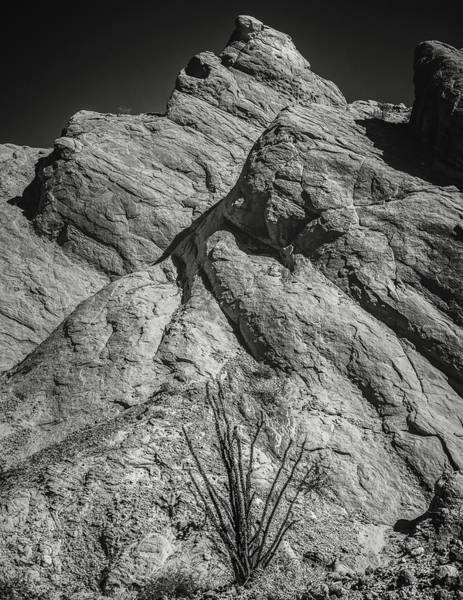 Smith Rock Photograph - Ocotillo In Truck Haven Rocks by Joseph Smith
