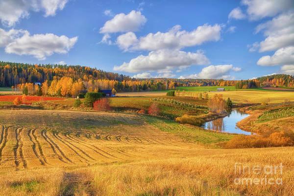 Salo Wall Art - Photograph - October Countryside 3 by Veikko Suikkanen