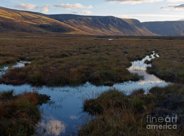 Photograph - October Evening - Glen Muick by Phil Banks