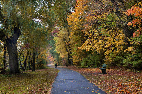 Photograph - October Promenade by Jessica Jenney