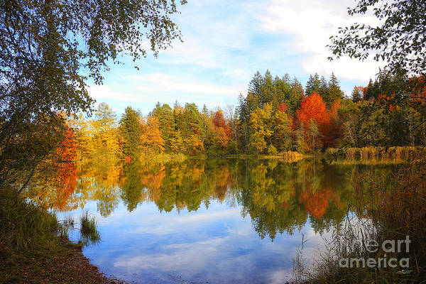 Photograph - October Reflections by Jutta Maria Pusl