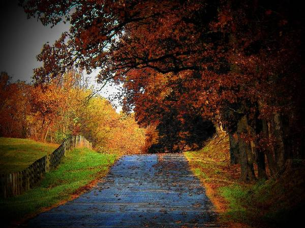 Wall Art - Photograph - October Road by Joyce Kimble Smith