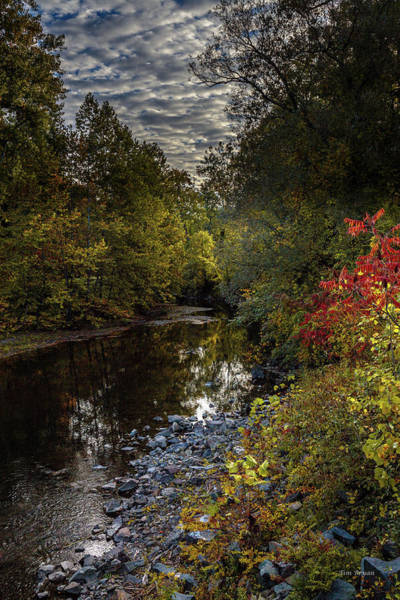 Photograph - October Scene by Tim Bryan