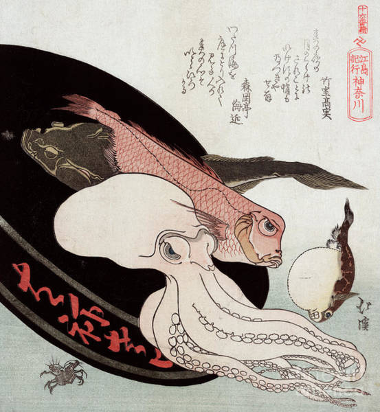 Biology Painting - Octopus And Ocean Fish by Totoya Hokkei