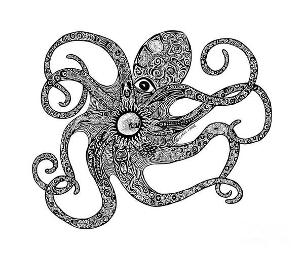 Black And White Nature Drawing - Octopus by Carol Lynne