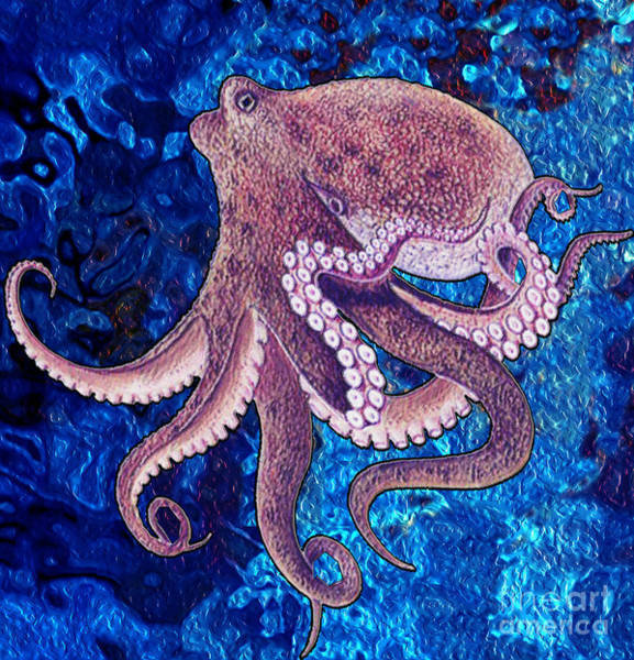 Wall Art - Digital Art - Octopus by Free Spirit
