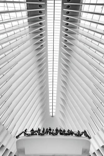 Photograph - Oculus Balcony by Framing Places