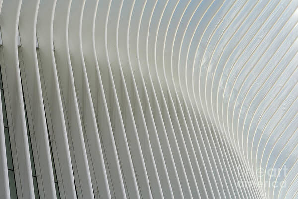 Photograph - Oculus Exterior Detail I by Clarence Holmes