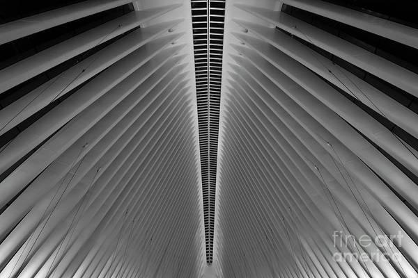 Oculus Wall Art - Photograph - Oculus  by Michael Ver Sprill