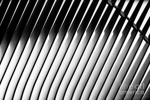 Photograph - Oculus Patterns New York City by John Rizzuto