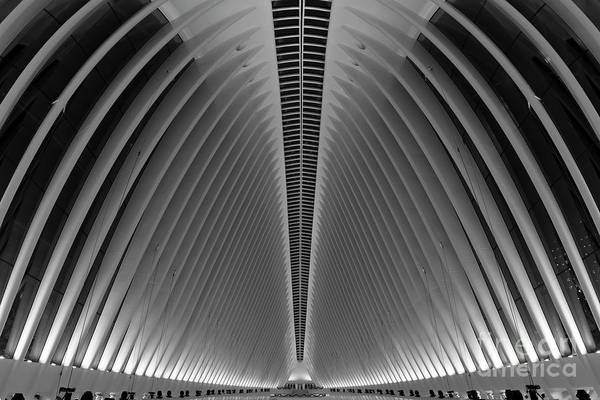 Depth Of Field Photograph - Oculus World Trade Center  by Michael Ver Sprill
