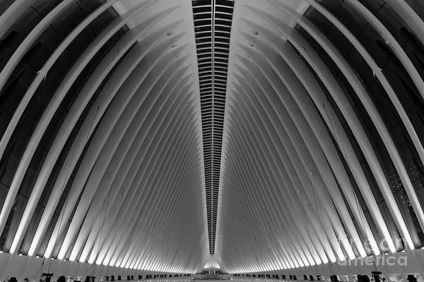 Oculus Wall Art - Photograph - Oculus World Trade Center  by Michael Ver Sprill