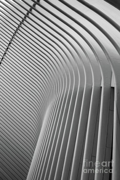 Wall Art - Photograph - Oculus World Trade Center by Edward Fielding