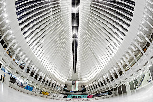 Photograph - Oculus World Trade Center Wtc Hub by Susan Candelario