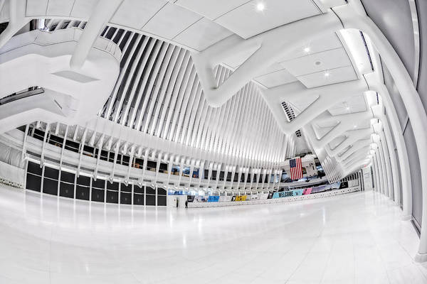 Photograph - Oculus World Trade Center Wtc Transit Hub by Susan Candelario