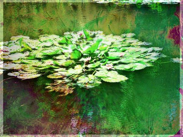 Photograph - Ode To Monet by Christine Paris