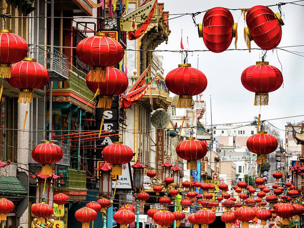 Photograph - Red Lanterns by Robin Zygelman