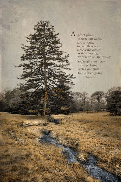 Photograph - Ode To Trees by Robin-Lee Vieira