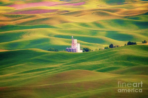 Wall Art - Photograph - Of Hills And Farmland by Katya Horner