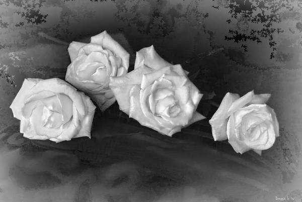 Photograph - Even Roses Now And Then by Bonnie Willis