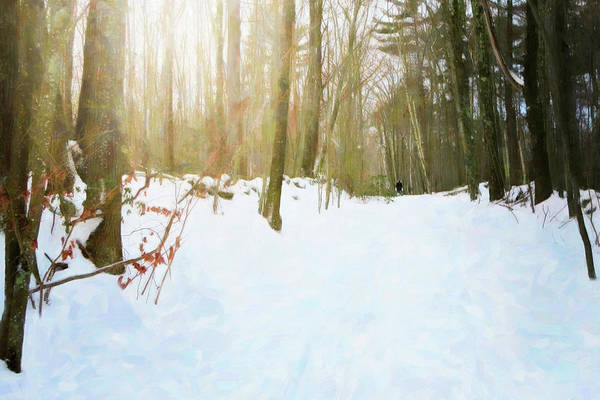 Digital Art - Off The Beaten Path by Sue Collura