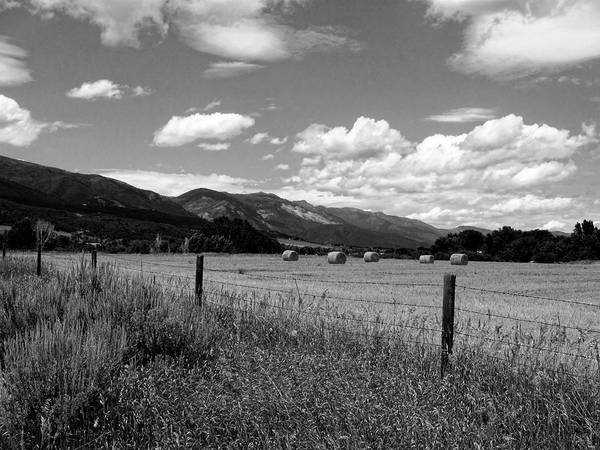 Photograph - Ogden Valley Hay Bales Photo Bw by David King