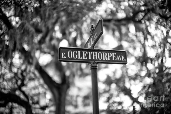 Wall Art - Photograph - Oglethorpe Avenue In Savannah by John Rizzuto