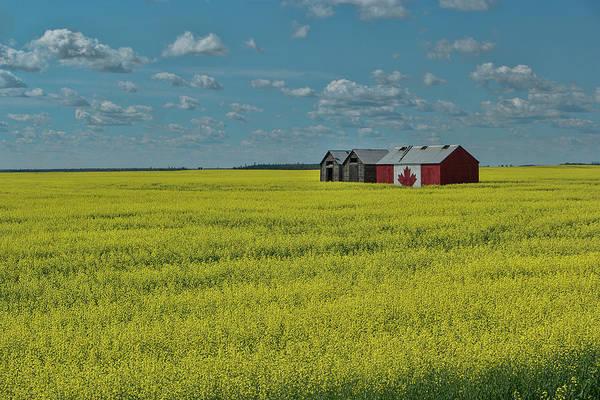 Gleeson Photograph - Oh Canada by David Gleeson