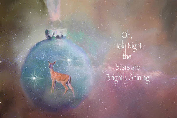 Photograph - Oh, Holy Night by Lynn Bauer