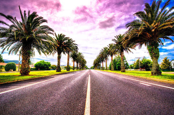 Straight Ahead Wall Art - Photograph - Oh New Zealand... by Les Lorek