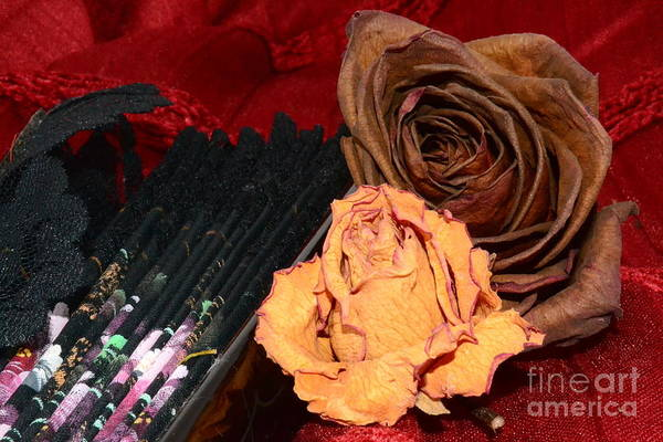 Floristry Photograph - Oh What Joy And What A Pity To Love You As I Love You by Jon Fennel