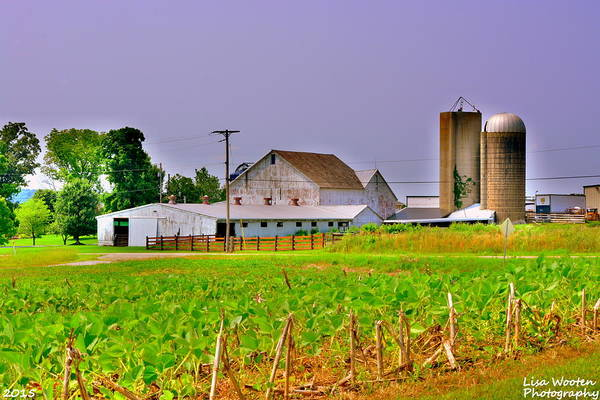 Photograph - Ohio Farm House H D R by Lisa Wooten