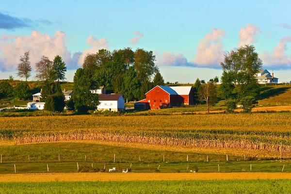 Photograph - Ohio Farm by Polly Castor