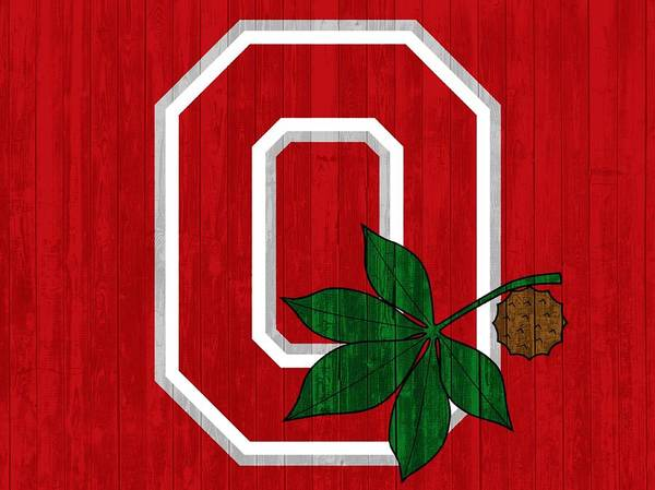 Wall Art - Mixed Media - Ohio State Wood Door by Dan Sproul
