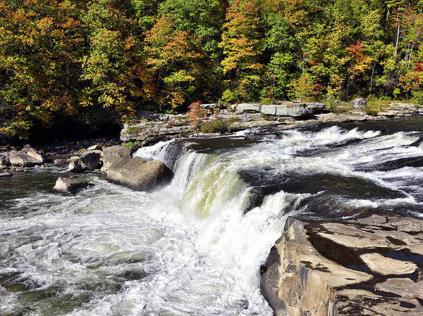 Wall Art - Photograph - Ohiopyle Falls - Pennsylvania  by Brendan Reals