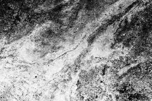 Photograph - Oil On Water Black And White Abstract Fine Art Photograph by John Williams