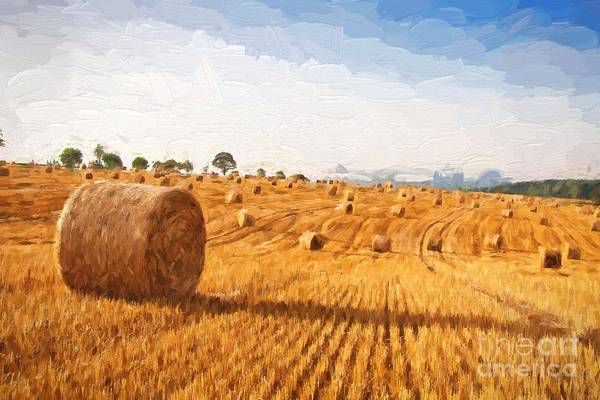 Barley Painting - Oil Painting Summer Landscape - Hay Bales On The Field After Harvest.  by Lubos Chlubny