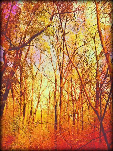 Photograph - Ojibway Autumn by Christine Paris