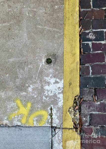 Photograph - Ok Curb by Flavia Westerwelle