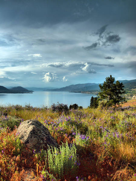 Photograph - Okanagan Lake In The Spring by Tara Turner