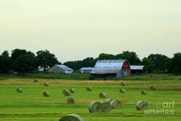 Wall Art - Photograph - Oklahoma Farm With Round Bales by Eric Irion