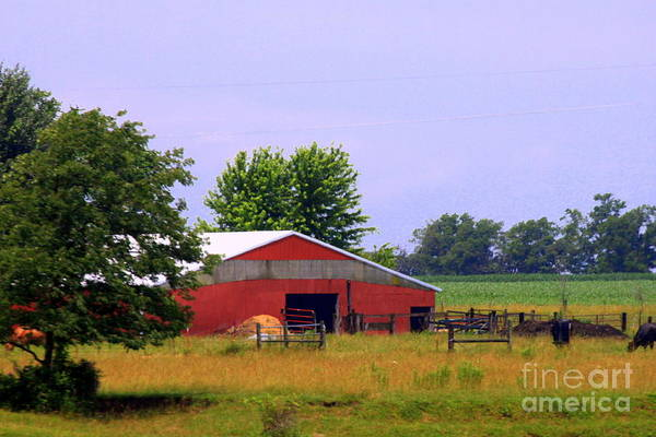 Wall Art - Photograph - Oklahoma Red Barn by Eric Irion